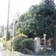 甲州街道:仙川・滝坂