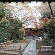 恵比寿:大正寺参道